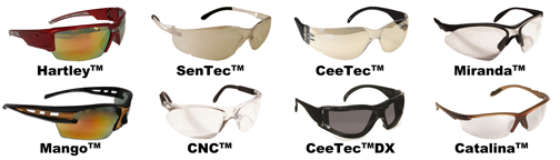 Dentec eyewear protection