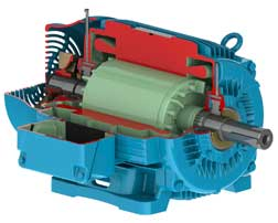 Weg Electric Motor For Severe Duty Applications