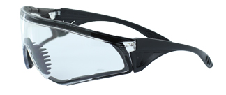 Rattlesnake safety glasses