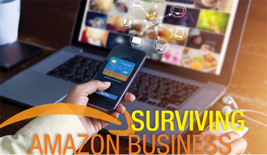 Surving Amazon Business