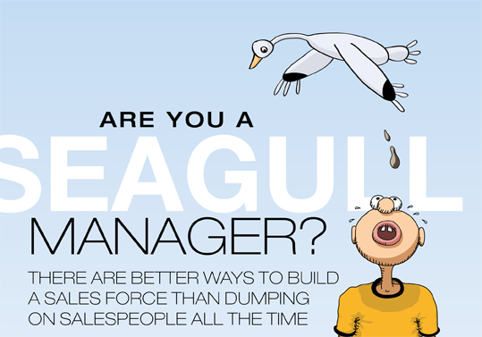 Seagull management